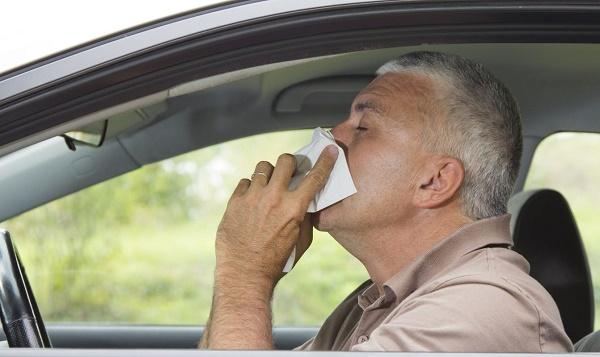 Por qué la DGT advierte a los conductores del peligro de la alergia al volante-1