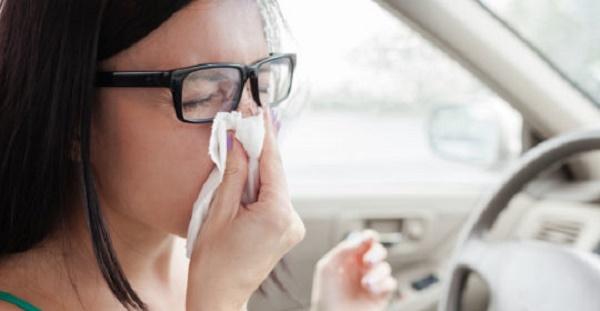 Por qué la DGT advierte a los conductores del peligro de la alergia al volante-2
